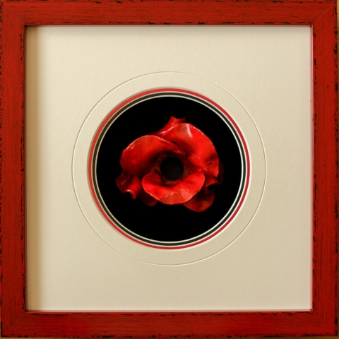 Tower of London Poppy in distressed red frame| Lovingly framed by Oxfordshire framer, Jules Sainter