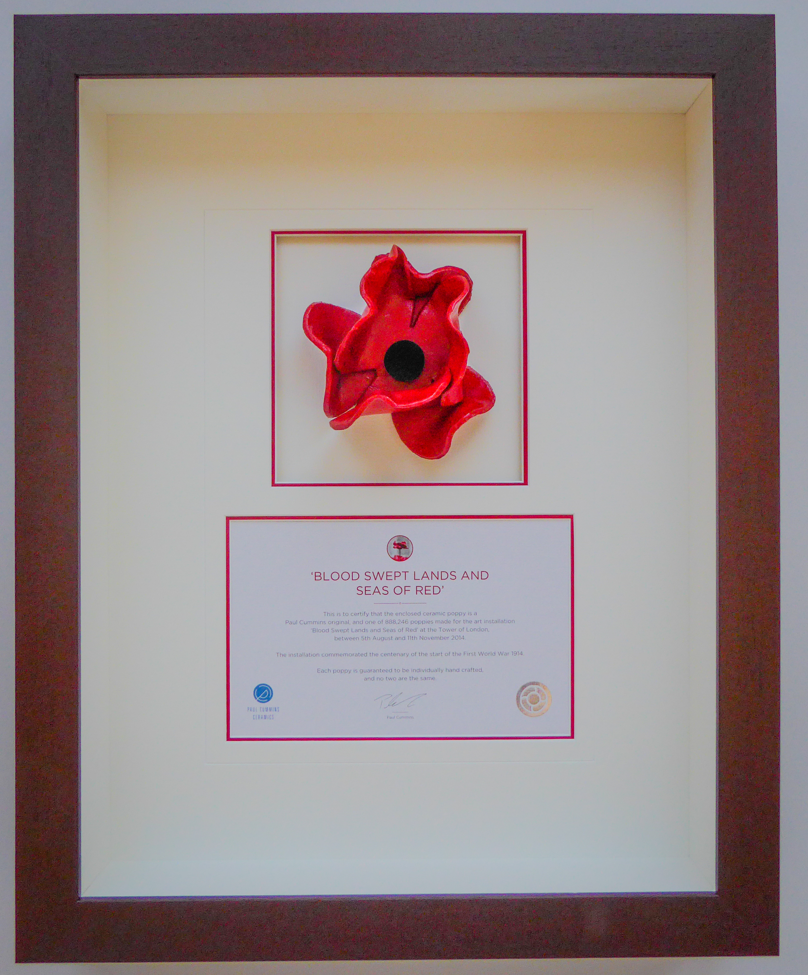 Tower of London Poppy framed by Jules Sainter