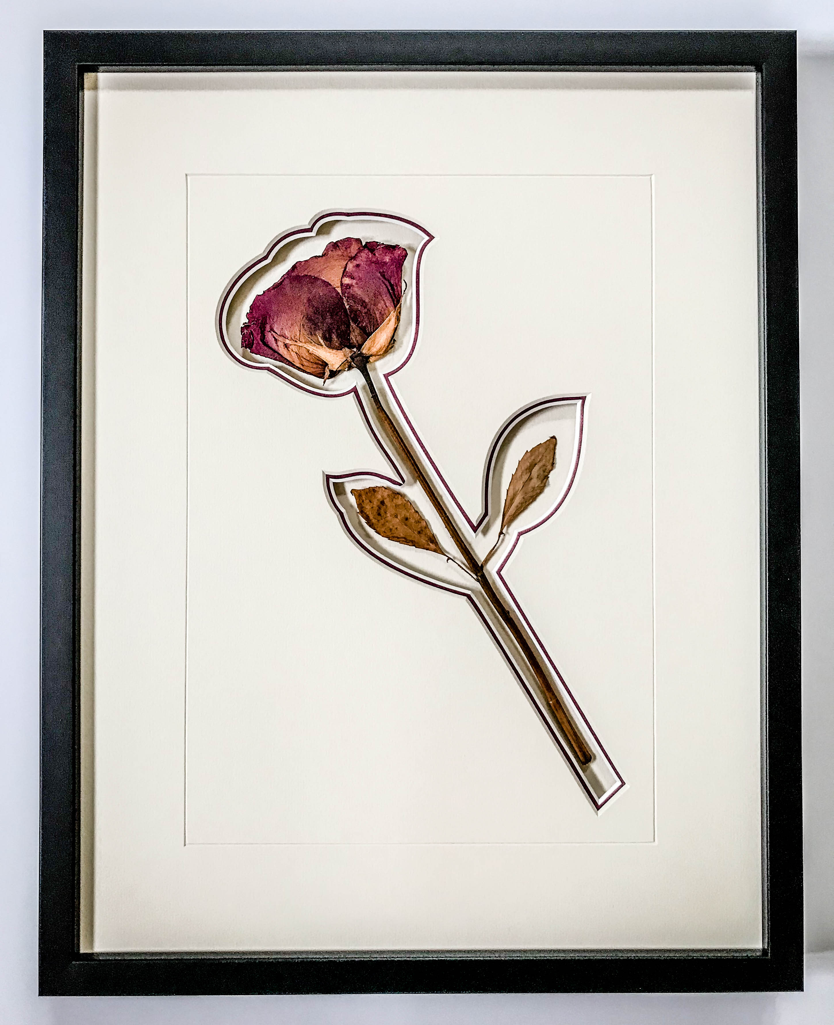 Pressed Rose | Framed by Jules Sainter of Lovingly Framed