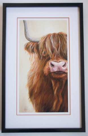 Highland Cow | Lovingly Framed by Jules Sainter (lovinglyframed.co.uk)