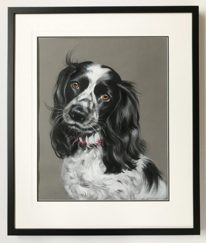 Gemma the Spaniel | Framed by Jules Sainter at Lovingly Framed